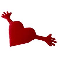 ФАМНИГ ЙЭРТА Подушка, красный