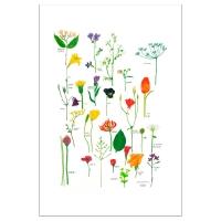 БИЛЬД Постер, цветы