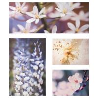 ГРОНБИ Набор картин,4 штуки, цветочная свежесть