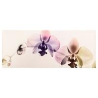 ПЬЕТТЕРИД Картина, Орхидея