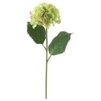 СМИККА Цветок искусственный, Гидрангея, зеленый