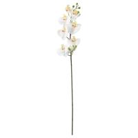 СМИККА Цветок искусственный, Орхидея, белый